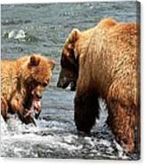 Mama And Baby Grizzly Bear At The Falls Canvas Print
