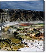 Mammoth Hot Springs Canvas Print