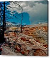 Mammoth Hot Springs Terrace Canvas Print