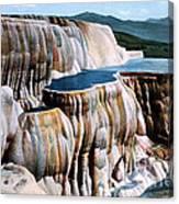 Mammoth Hot Springs Yellowstone Np Canvas Print
