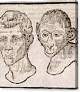 Man And Monkey's Head Canvas Print