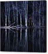 Man In Woods By River Canvas Print