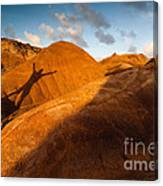 Man On Mars Canvas Print