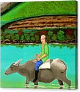 Man Riding A Carabao Canvas Print