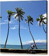Man Riding Bicycle Beside Palm Trees Canvas Print
