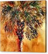 Manasota Key Palm 1 Canvas Print