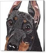 Manchester Terrier Vignette Canvas Print