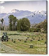 Mancos Colorado Landscape Canvas Print