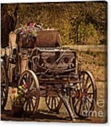 Mancos Flower Wagon Canvas Print
