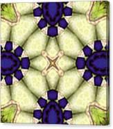 Mandala 115 Canvas Print