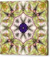 Mandala 127 Canvas Print