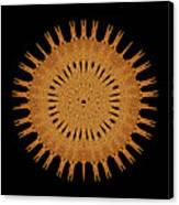 Sand Mandala Canvas Print