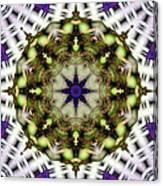 Mandala 21 Canvas Print