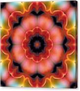 Mandala 91 Canvas Print