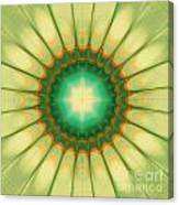 Mandala Of The Hope Canvas Print