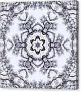 Mandala100 Canvas Print