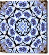 Mandala102 Canvas Print
