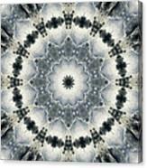 Mandala129 Canvas Print