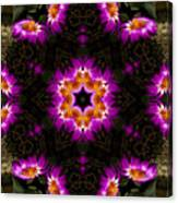 Mandala73 Canvas Print
