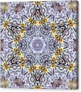 Mandala90 Canvas Print