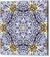 Mandala94 Canvas Print