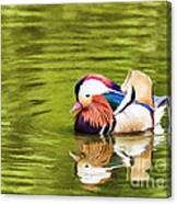 Mandarin Reflection Canvas Print