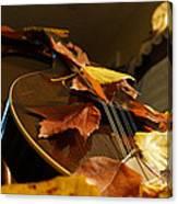 Mandolin Autumn 3 Canvas Print