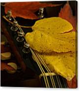 Mandolin Autumn 6 Canvas Print