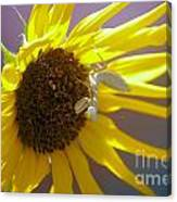 Mantis And The Flower Canvas Print