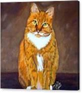 Manx Cat Canvas Print