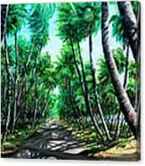 Manzanilla Coconut Estate Canvas Print