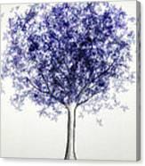 Maple Tree 3 Canvas Print