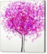 Maple Tree 4 Canvas Print