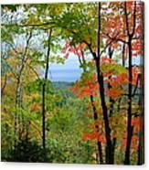 Maples Against Lake Superior - Tettegouche State Park Canvas Print
