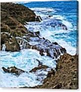 Mar Chiquita 6 Canvas Print