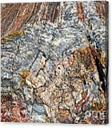 Marbleized Wood Canvas Print