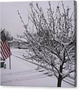 March Snowfall Canvas Print