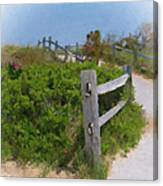 Marconi Beach Path Canvas Print