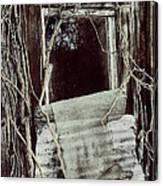 Maria's Window Canvas Print