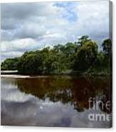 Marimbus River Brazil Reflections 4 Canvas Print