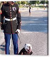 Marine And Bulldog Canvas Print