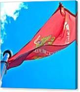 Marine Corps Flag Canvas Print