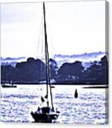 Marine Dream Canvas Print