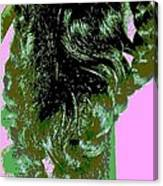 Mariposa Canvas Print