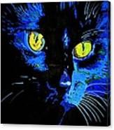 Marley At Midnight Canvas Print