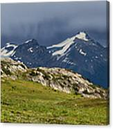 Marmot Meadow Canvas Print