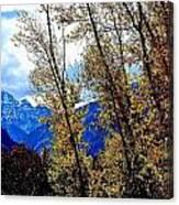 Marron Belles At Fall Canvas Print