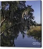 Marsh Creek Canvas Print