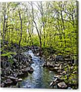 Marsh Creek In Spring Canvas Print