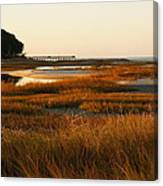 Marsh Grass Autumn Canvas Print